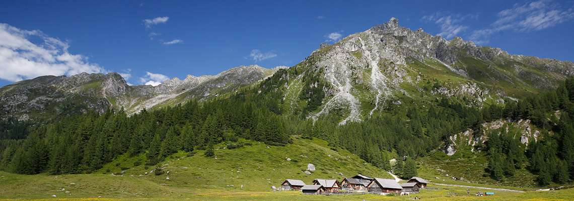 Summer holiday in the Alps with Lion Alpin - Hiking