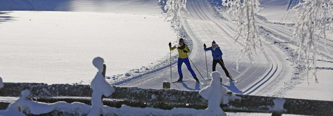 Winter holiday in the Alps with Lion Alpin - cross country skiing